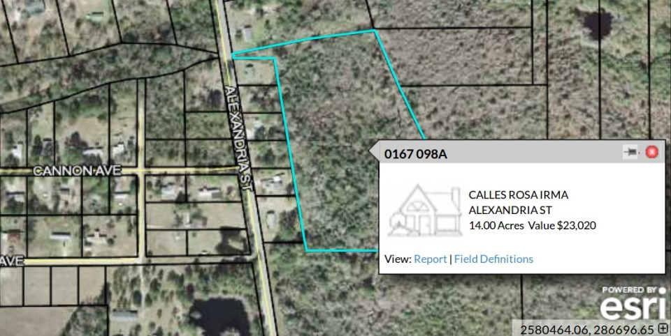 1098x551 Parcel 0167 098A, in REZ-2017-02 Alexandria St, Hahira, GA, by John S. Quarterman, 30 January 2017