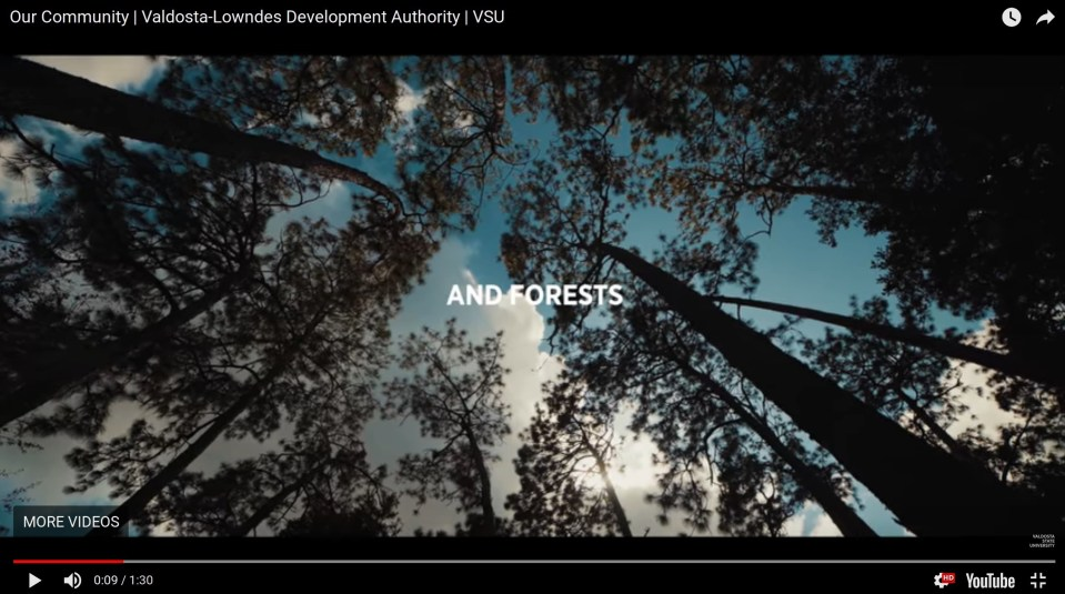 2544x1419 Forests, Video, in onevaldostalowndes.com, by VLDA, 5 April 2018