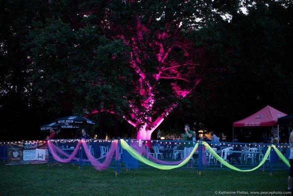 L'arbre rose de la FrancoFEST au parc Gage. (Photo: Katherine Fleitas)
