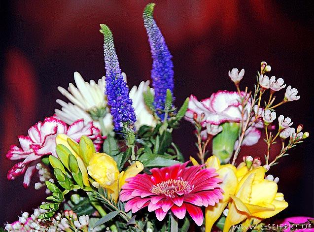 Blumenstrau Blumenbilder zum Geburtstag Blumenstrau