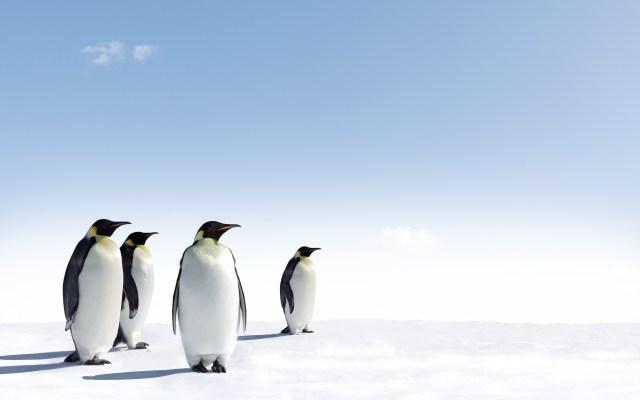 L4B-Embedded-Linux