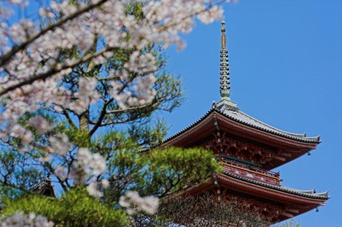 La culture japonaise – L'inspiration d'une autre vie