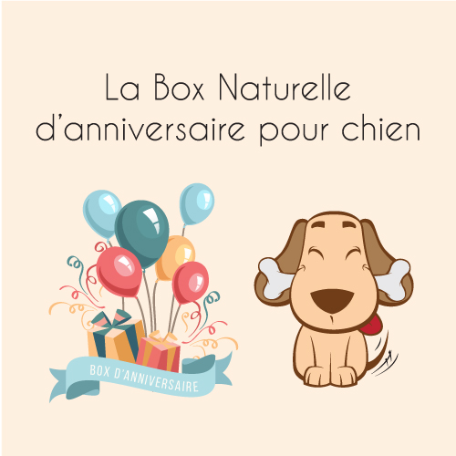 la box naturelle d 39 anniversaire pour chien la box naturelle. Black Bedroom Furniture Sets. Home Design Ideas
