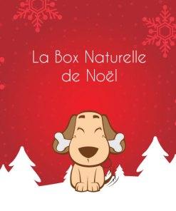 La Box Naturelle de Noël pour chien