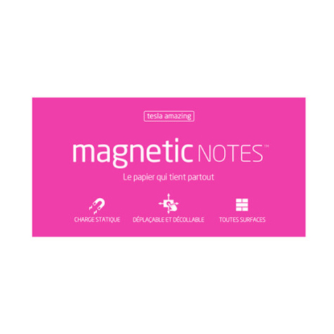 Magnetic Notes L Tesla Amazing Rose