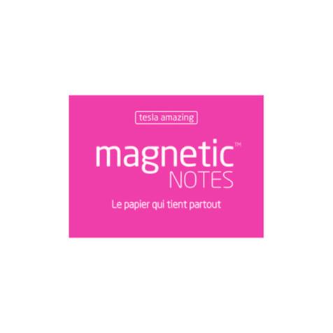 Magnetic Notes S Tesla Amazing Rose