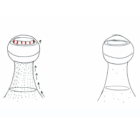 Bouchon Bubble Indicator L'Atelier du Vin