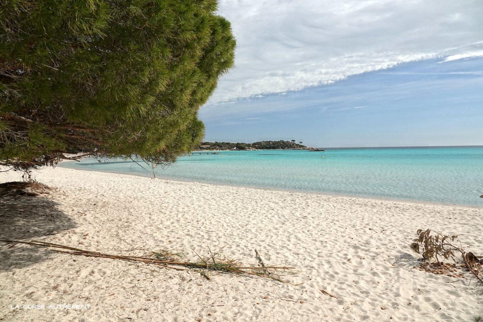 Santa Giulia en Corse