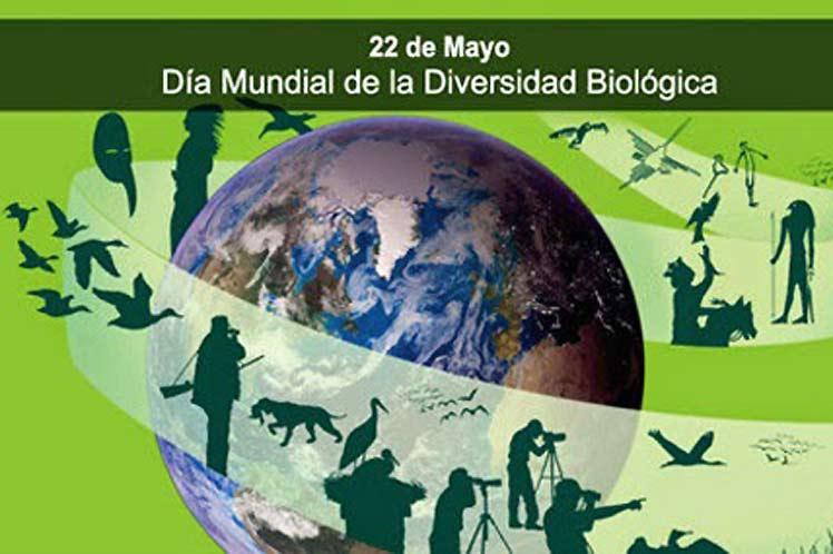 Dia-Internacional-Diversida (1)