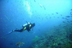los-cobanos-reef