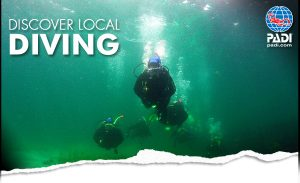 discover-local-diving