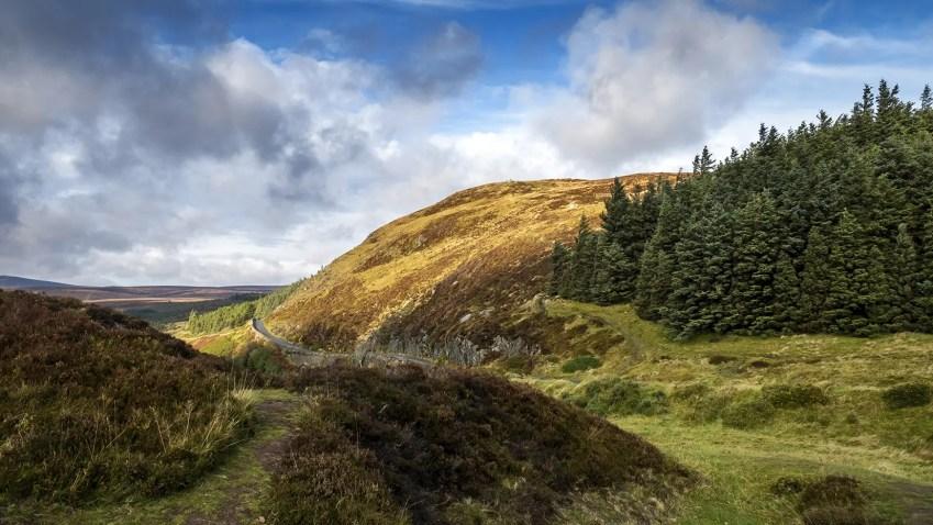 Wicklow Mountains route sapins ciel bleu automne