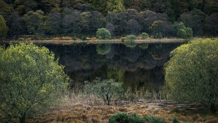 Lac Lower Glendalough arbres Wicklow Mountains