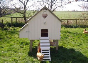 Bespoke hand painted chicken house
