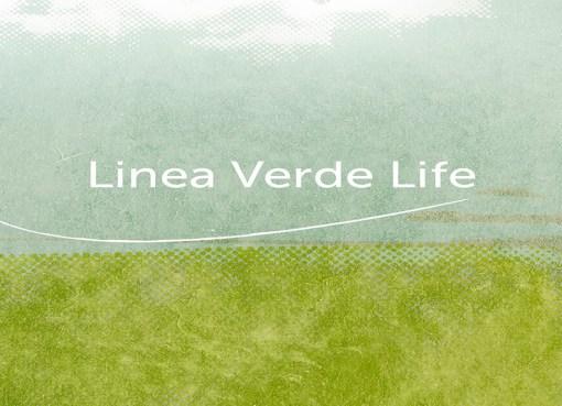 linea verde life