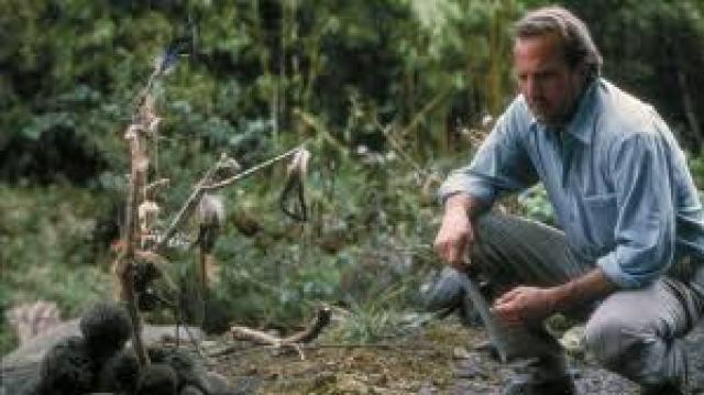 Il segno della libellula - Dragonfly - Film (2002)