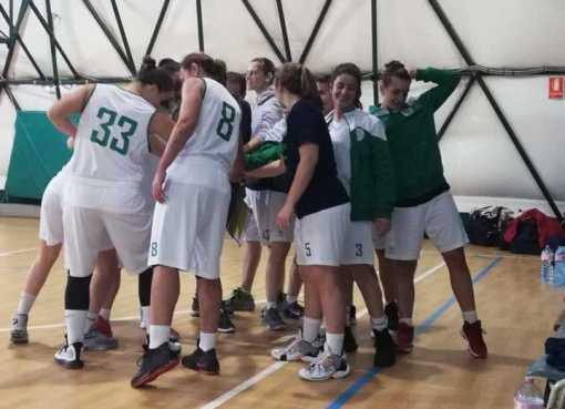 Cus Ancona basket
