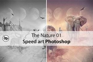 The Nature 01, speed art avec Photoshop sur le blog La Retouche photo