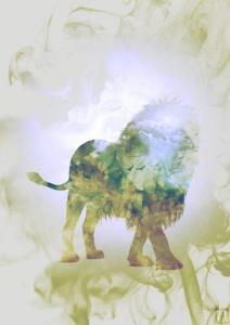 Lion_Smoky nature_copyright Alexandre De Vries