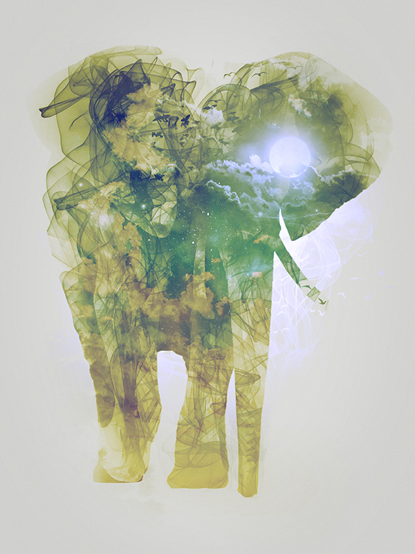 "Elephant, piece 1/10 of the serie ""Smoky nature"" realized by Tpex."