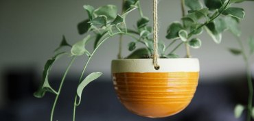 suspension-plante-ceramique-macrame-diy