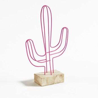 cactus-rose-la-redoute
