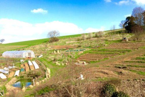 calendrier potager à La Source dorée façon permaculture
