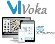 vivoka2