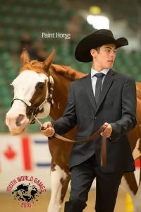 Competizione internazionale Paint Horse