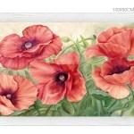 FLOWERS601 quadro moderno su tela con fiori floreale papaveri rossi
