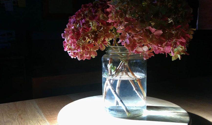 detalle floral Gándara