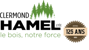 logo_hamel_125