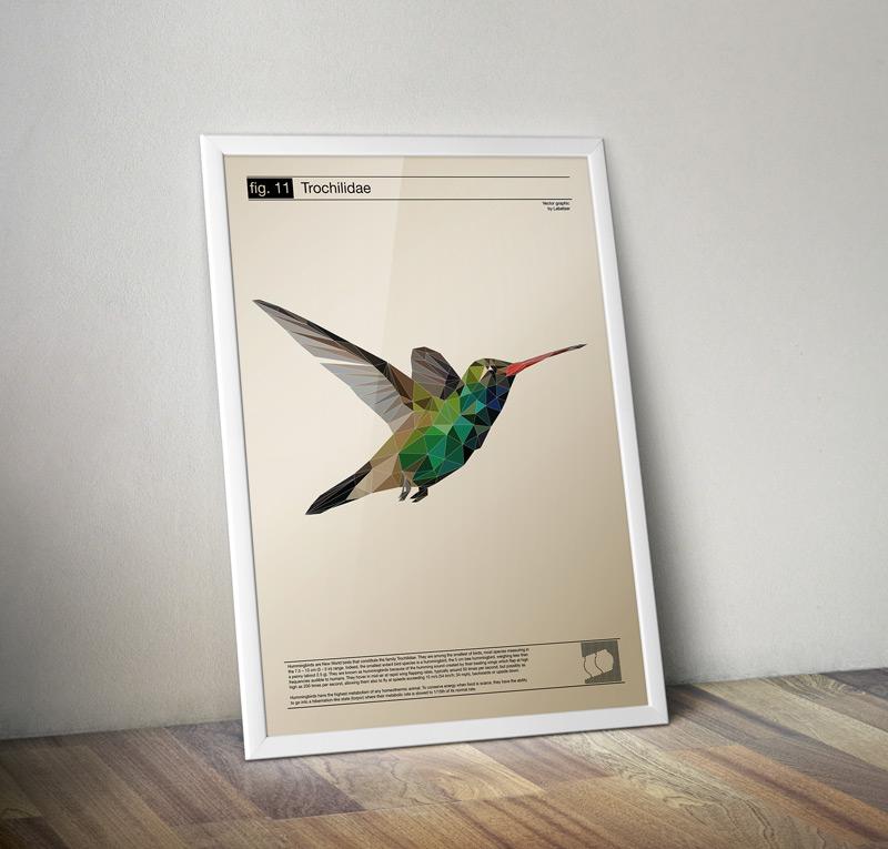 fig11_kolibri