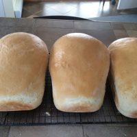 Du bon pain maison