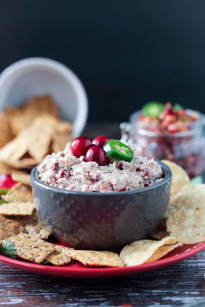 Creamy Cranberry Salsa Dip (Dairy Free) | Want to serve your guests the best Christmas party appetizers this year? Find a list of 40+ Christmas appetizers ideas & easy recipes for Christmas party appetizers, both sweet and savory holiday food. From elegant Christmas finger food ideas to easy dips, and simple crockpot holiday appetizers, (vegetarian, keto and even gluten-free appetizer ideas), perfect for a crowd and for kids. #christmaspartyappetizers #appetizersforchristmasparty #christmasparty #fingerfood #christmasfood