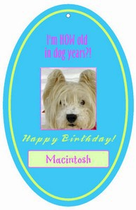 Personalize Birthday Hang Tags And Favor Tags With Your