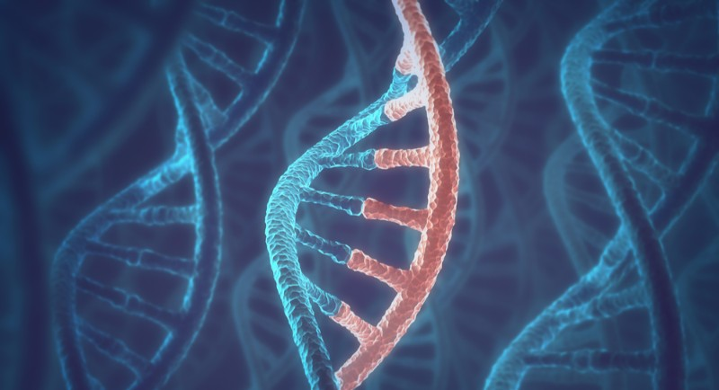 BioNTech Publishes First Data on mRNA-Encoded Cancer ...