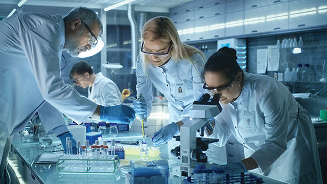 creating a successful laboratory