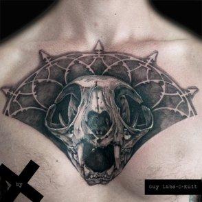 Cat Skull - 2015