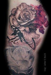 Graphic Aquarelle Rose 2015