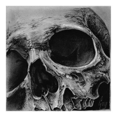 "Charcoal Drawing ""Cornerskull"""