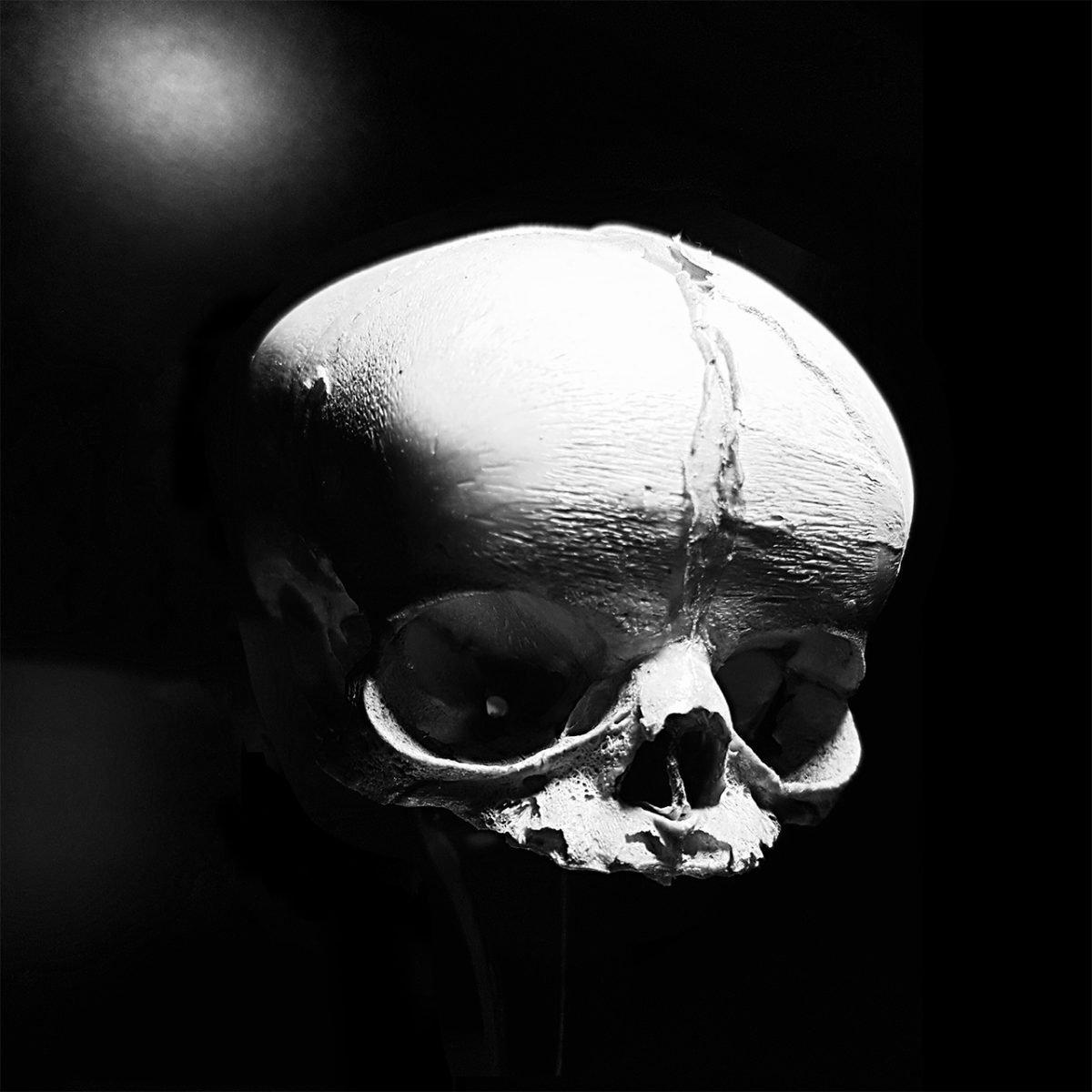 Fetus Skull by Guy Labo-O-Kult
