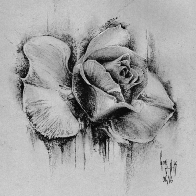 """Charcoal Drawing """"Rose"""" by Guy Labo-O-Kult"""