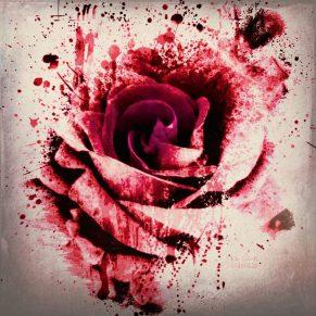 """""""Rose"""" – GraphiKArt by Ka L-O-K"""