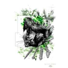 """Sciurus Vulgaris"" – HelvEdition by Ka L-O-K"