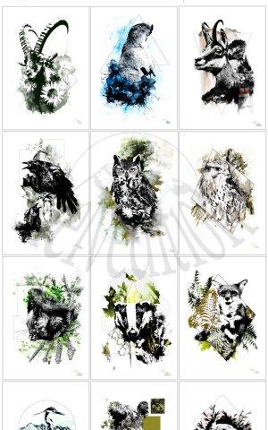 HelvEdition Ka L-O-K Graphic Arts