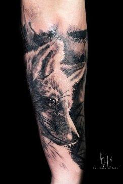 The Fox by Guy Labo-O-Kult