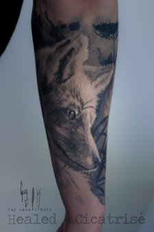 HEALED _ Fox by Guy Labo-O-Kult