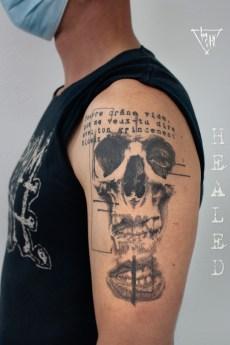 Healed Wanna Done Motif   Guy Labo-O-Kult