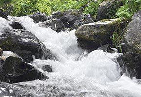 eau environnement bretagne